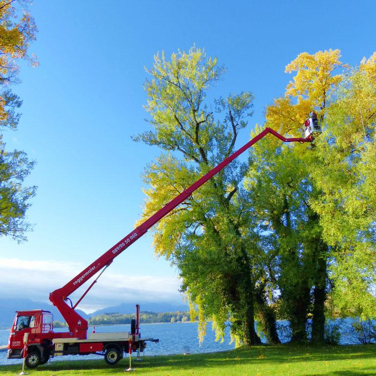 Arbeitseinsatz LKW Arbeitsbühne beim Bäume schneiden